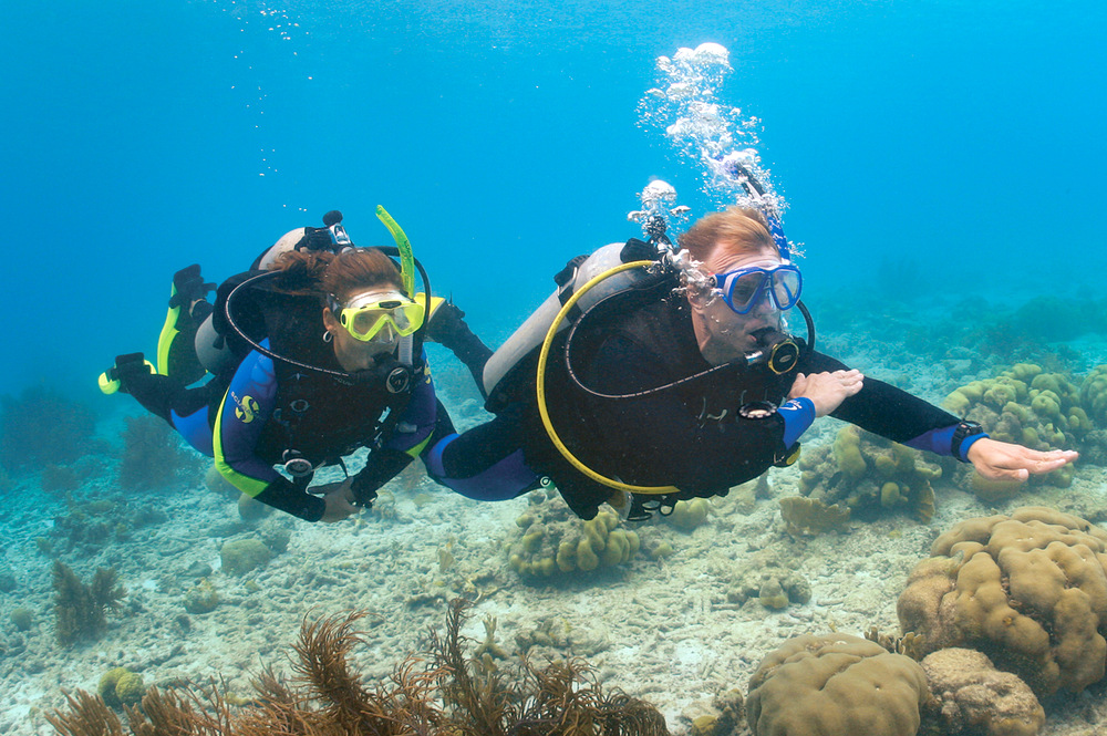 navigation diver,подводная навигация,navigation diving,погружение с компасом,пхукет,таиланд,дайвинг,обучение,курсы,underwater navigation,padi,ndl,ориентирование под водой,ориентирование под водой компасом